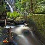 Gheerulla-Creek-falls